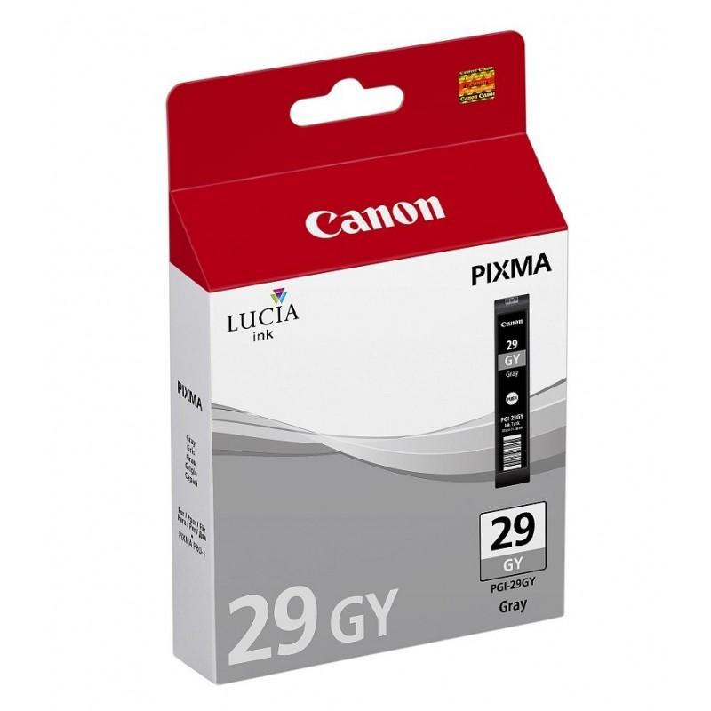Canon PGI29 GY