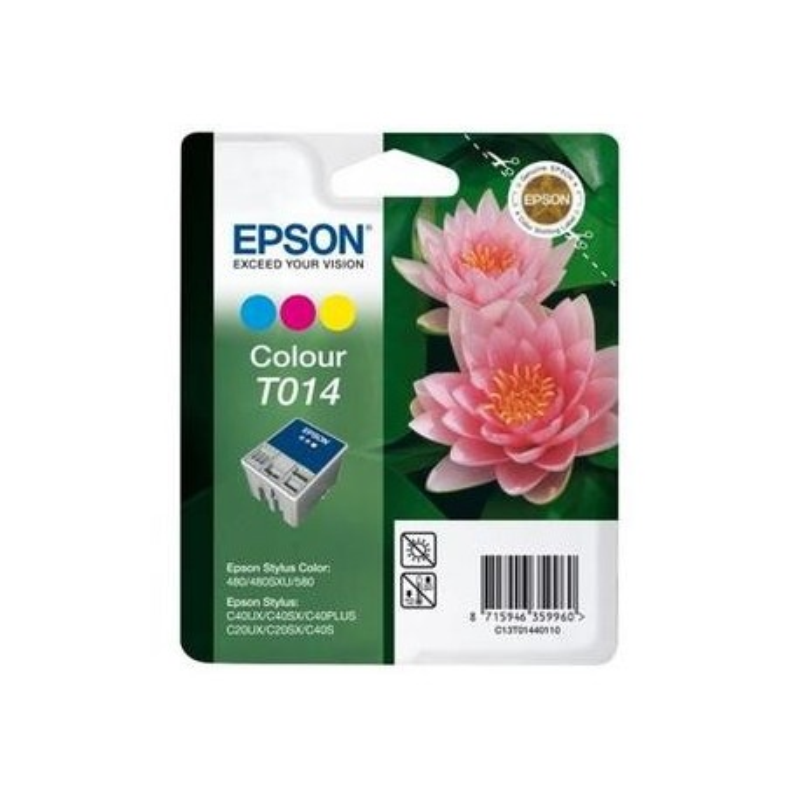 Epson T014 Cor