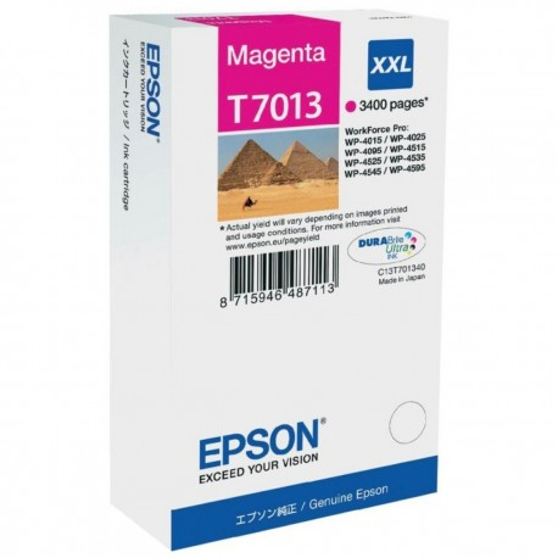 Epson T7013 M XXL
